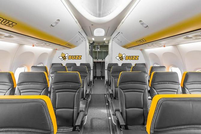 buzz seats
