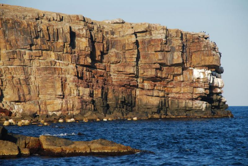 Скелі острова Зміїний