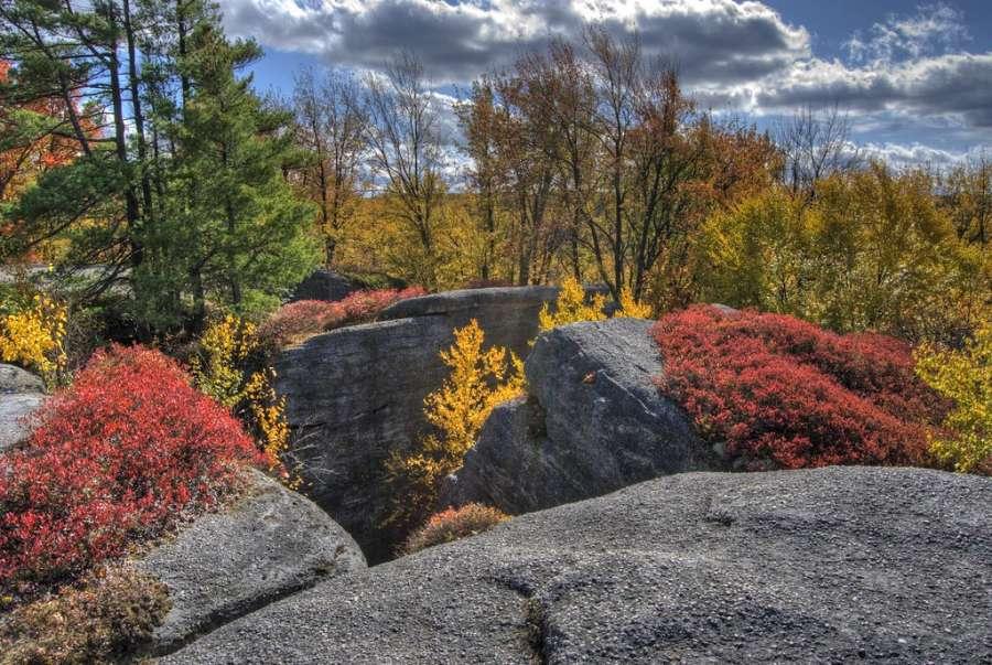 Rock City Park - Olean